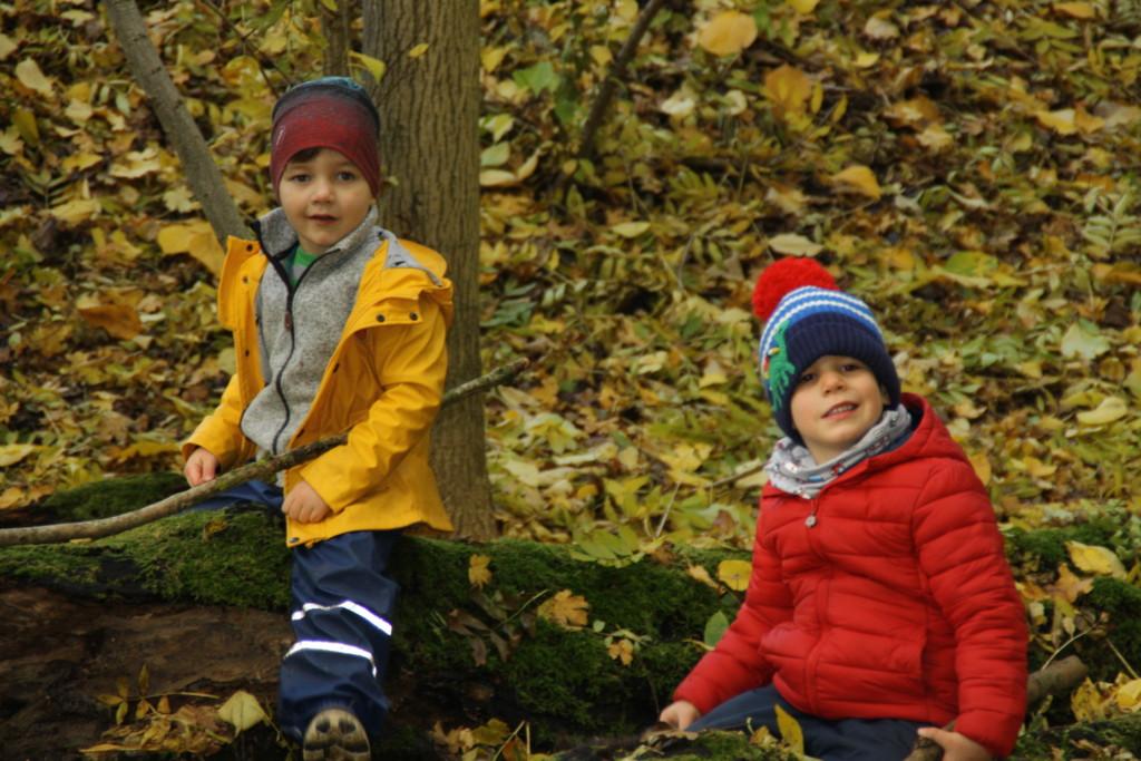 Kinder im Wald am Spielen